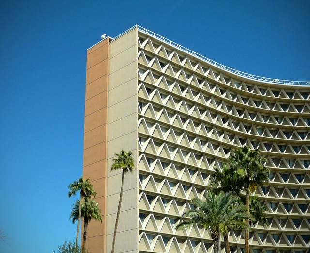 Arizona State University, Tempe- MANZY! not sure if I actually loves manzy, but loved the experience and ASU- go devils