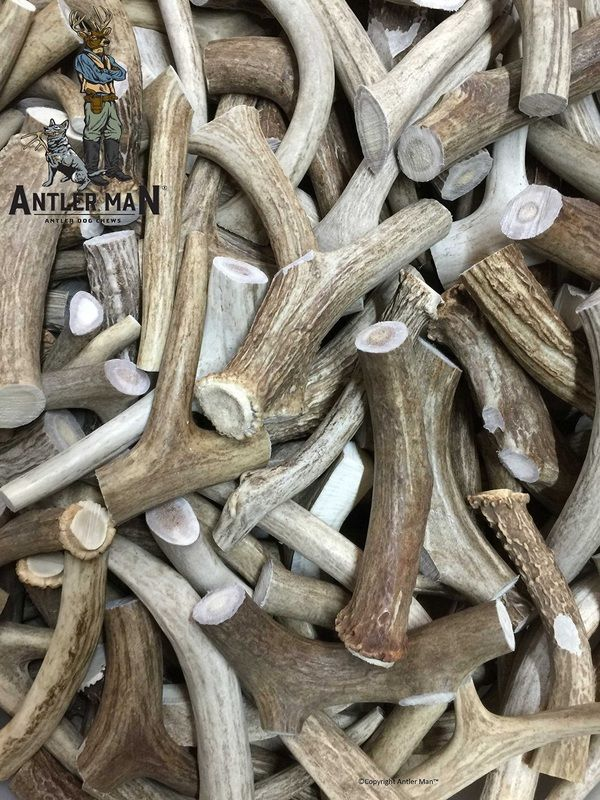 If your dog is an aggressive chewer, Antler chew toys/treats are an all-natural, safe, odor-free way to satisfy her need to gnaw.
