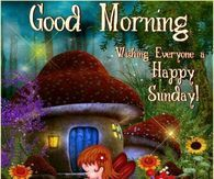 Good Morning, Wishing Everyone A Happy Sunday!