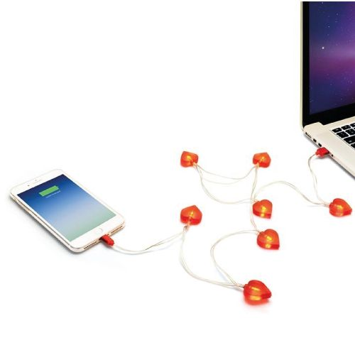 Love Heart 1m USB Charging Cable