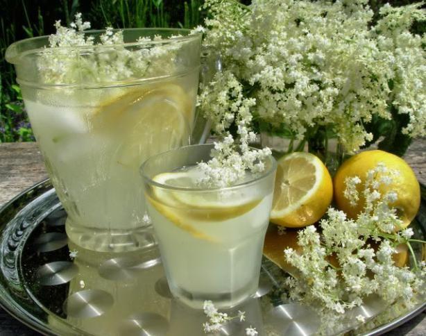 Old Fashioned English Elderflower Cordial - Looks so refreshing!
