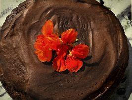 Op deze pagina vind je een heerlijk recept voor een heerlijke chocoladetaart. Helemaal gemaakt met gezonde ingrediënten!