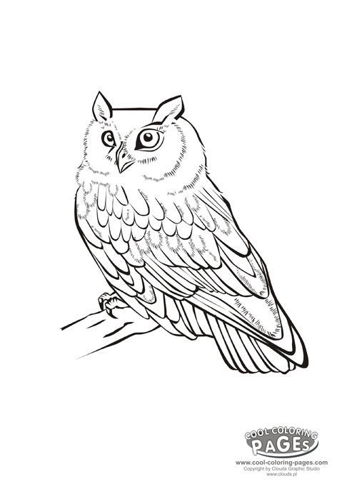 53 best Coloring book images on Pinterest Coloring books, Coloring - fresh free coloring pages of a kite