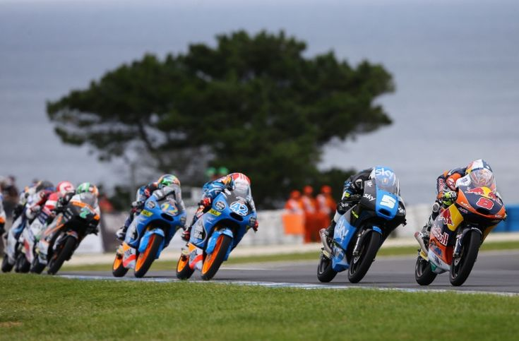 Miller, Moto3 race, Australian MotoGP 2014