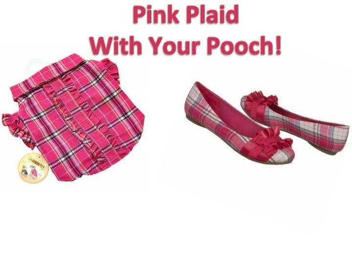Play with a Fashionable Fido!: Fashion Fido
