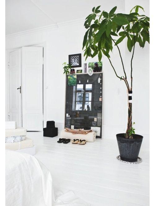 Inspiratie: grote planten | ELLE Decoration NL