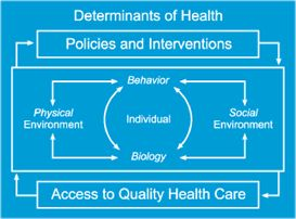 17 best images about social determinants of health on - Healthy people 2020 is a plan designed to ...