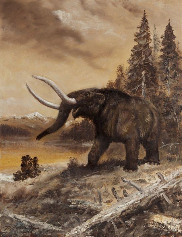 American Mastodon by Petr Modlitba