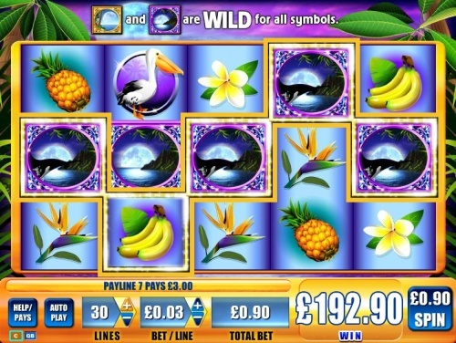 WMS online slot Blue moon slot - 5 Wilds almost on line...  You can find hundreds of Big Win pictures and more videos here: http://www.bigwinpictures.com