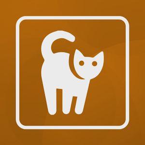 Imágenes de gatos para personalizar los mensajes del chat