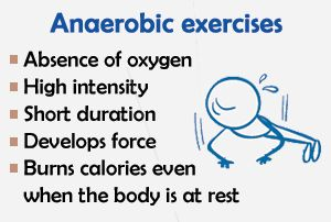 aerobic vs anaerobic exercise - Yahoo Image Search Results                                                                                                                                                                                 More