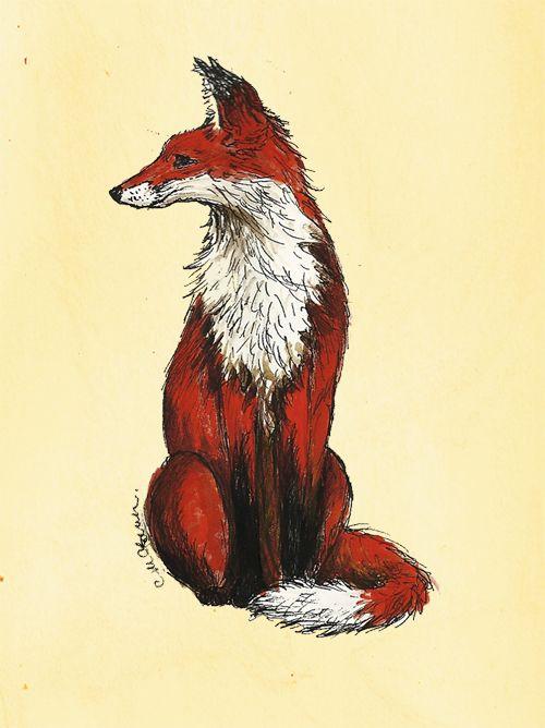 Sitting fox illustration - photo#2