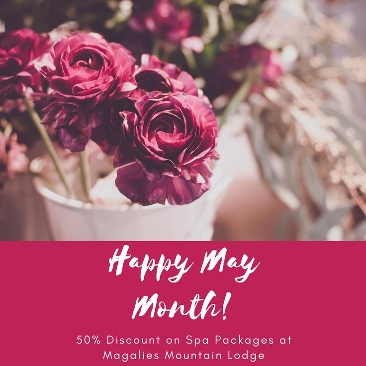 Magalies Mountain Lodge is offering 50% discount on all Standard Spa Packages until the end of July 2017. Prices from R375 per person for a Spa Pampering Deal.   Spa Day deals at 50% Discount from Sundays to Fridays. Spa Getaways at 50% Discount from Sundays to Thursdays.