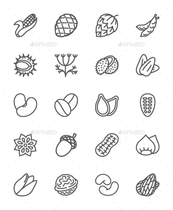 Set Of Nuts, Seeds And Vegetables Line Icons  Pack Of 64x64