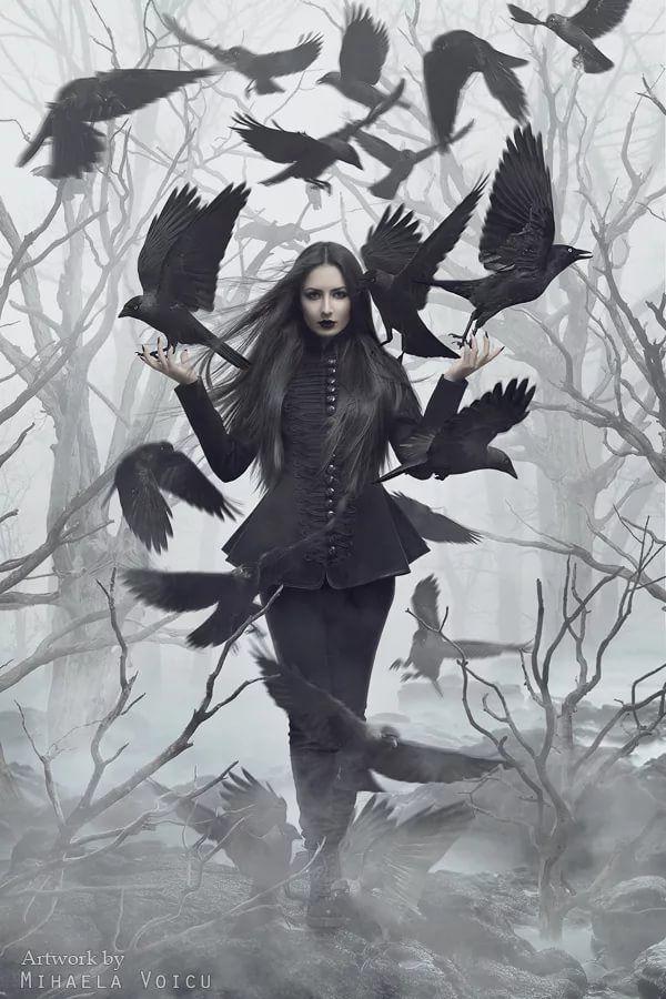 ворон ведьма картинки свойства корда выбор