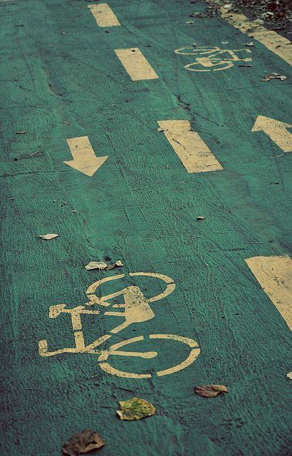Bike lane in Herastrau