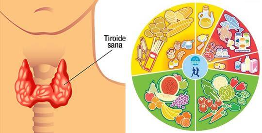 I cibi che aiutano a riparare la tiroide | Rimedio Naturale