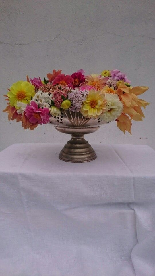Dahlia centrepiece. All locally and organically grown.