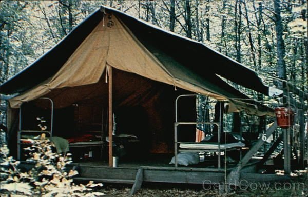 Platform tents at camp birchwood hayward wi animals for Permanent tent cabins