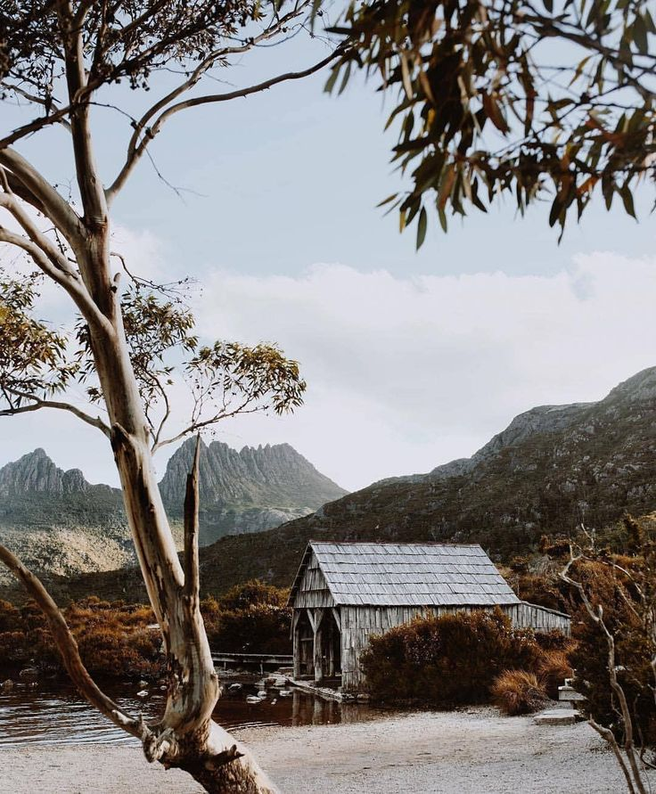 """9,671 Likes, 81 Comments - Discover Tasmania (@tasmania) on Instagram: """"It's a uniquely Tassie scene and location that embeds itself in the memories of all who visit, and…"""""""