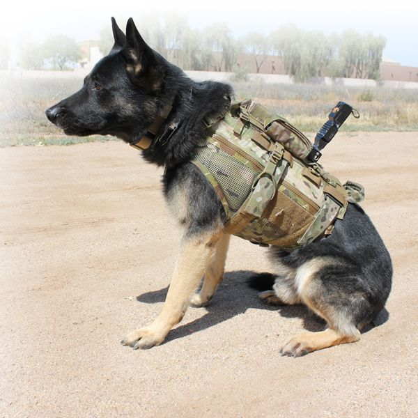 Revere K9™ Modular Assault Vest | TYR Tactical - Plate Carrier, Body Armor, Tactical Gear, Tactical Armor