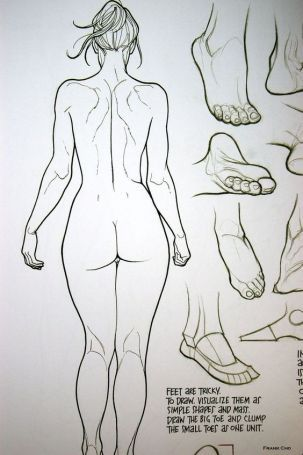 character-design-female-anatomy14