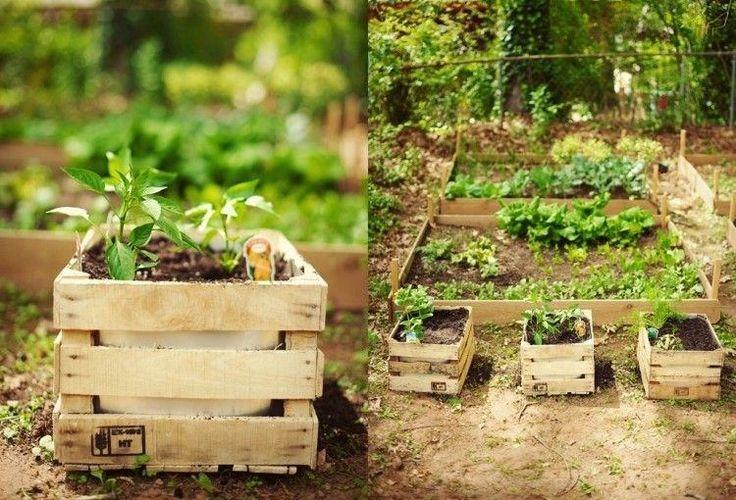 bac à fleurs en lattes de palettes de bois et des parterres de légumes