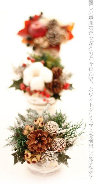 遊び心いっぱいの、ふわふわポット!キャロル。クリスマス・キャロル【15時迄の注文であす楽】【送料無料】クリスマス/プレゼント/クリスマスギフト/クリスマスプレゼント/クリスマス/彼女/妻/女性/chrismas/フラワー/プレゼント【有料バッグ:S対応】