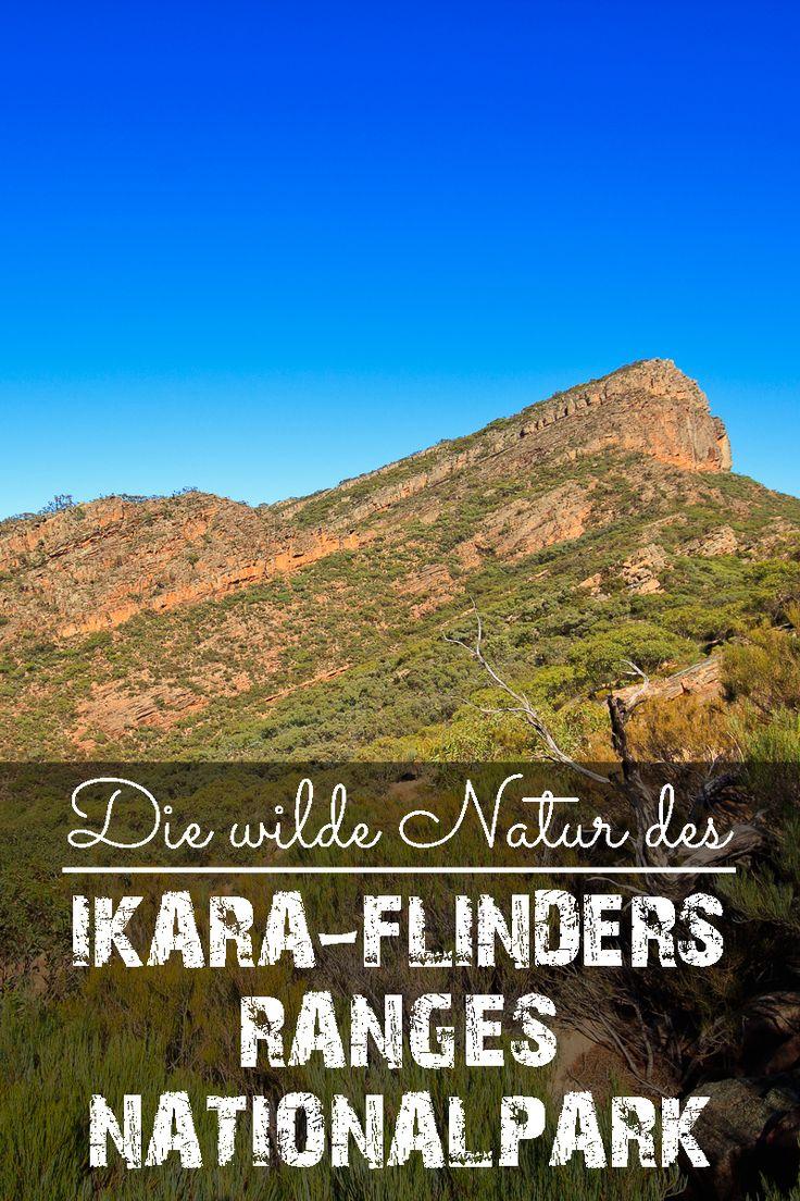 Der Ikara-Flinders Ranges Nationalpark ist einer der beliebtesten Nationalparks in Südaustralien.