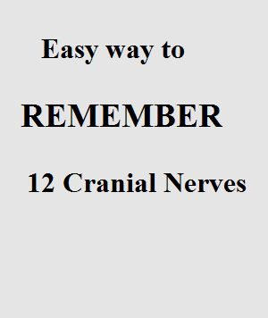 Many medical student as well as nursing students face difficulty to remember the cranial nerves. If you are one of them then following Cranial nerves mnemonic can might help you out. Nerves in huma...