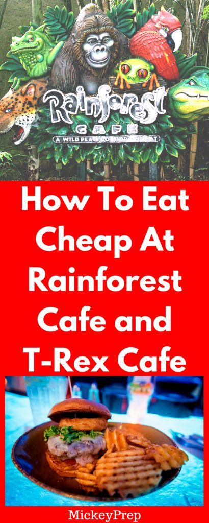 How to eat for cheap or even free at Rainforest Café, and T Rex Café on Disney property