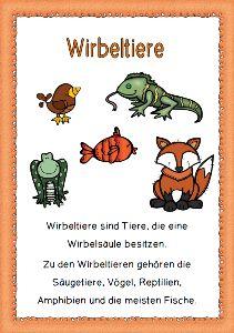 Mein Tierbuch: Plakate und Aufgabenblätter