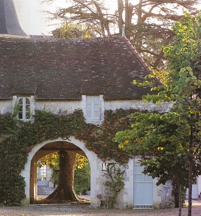 Architecture: a stable block that wraps itself around an old tree.: Exterior, Dream House, Beautiful, Places, Homes, Space, Garden