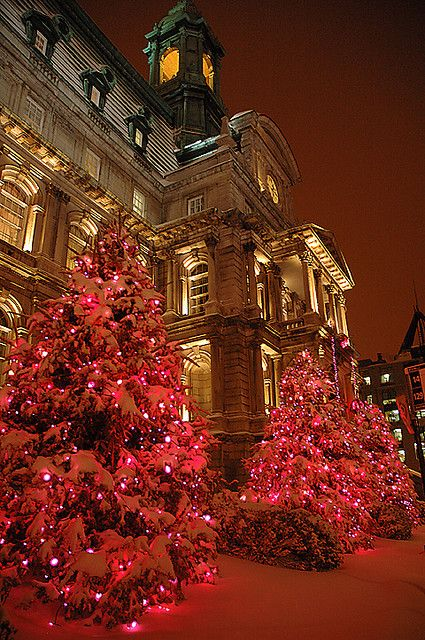 Christmas in Hotel de ville Montreal, Old Montreal, Canada  Do you want to study English of French in Canada?  Visit our website www.blicanada.net