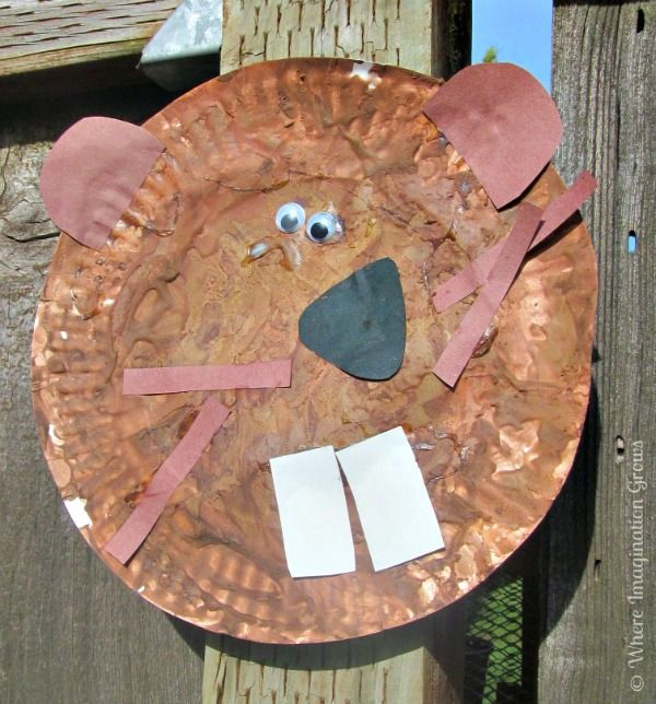 oregon beaver craft