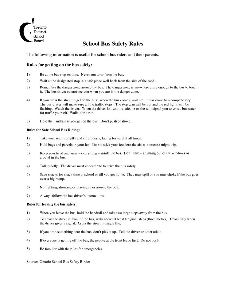 14 best Bus safety images on Pinterest School buses, School bus - school bus driver resume