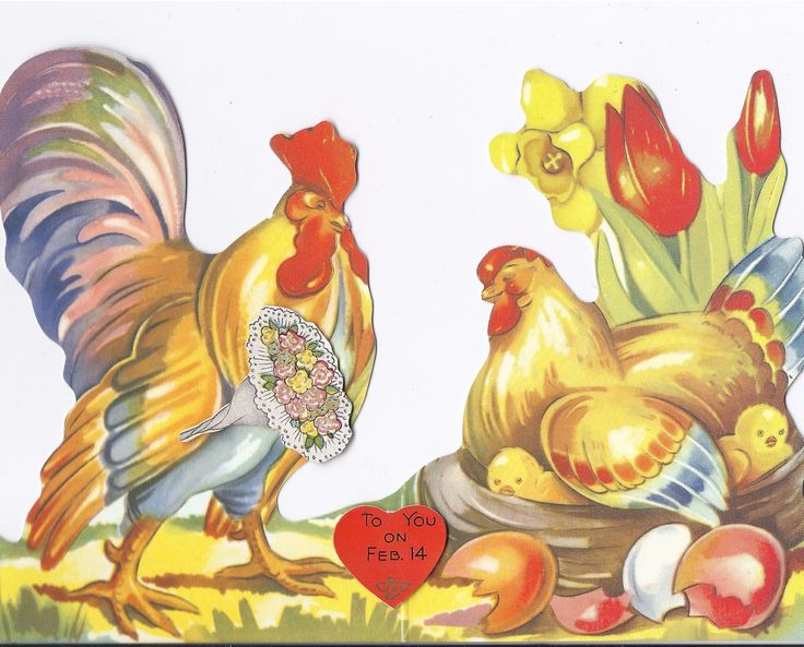 Vintage Valentines Card I Ve Not Seen A Chicken One Very Sweet