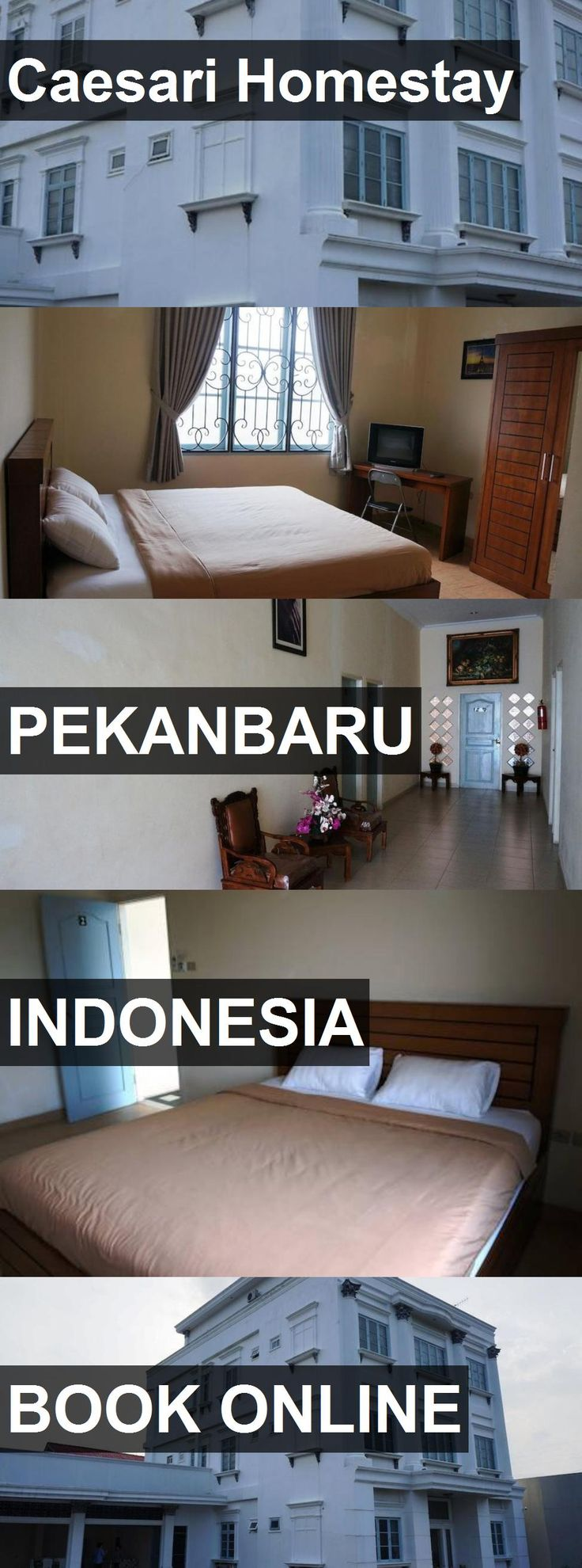 Hotel Caesari Homestay in Pekanbaru, Indonesia. For more information, photos, reviews and best prices please follow the link. #Indonesia #Pekanbaru #travel #vacation #hotel