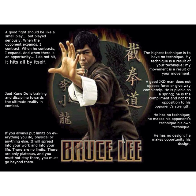 56 Best images about Bruce Lee art on Pinterest | Bruce ...