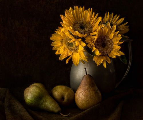 35 Superb Examples of Still Life Photography | Inspiration