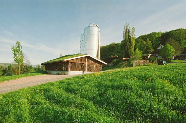 Beautiful Cow Barn In Basel Is Made Of Tree Branches Topped With A Grassy Roof Agricultural Buildings Barn Building Design