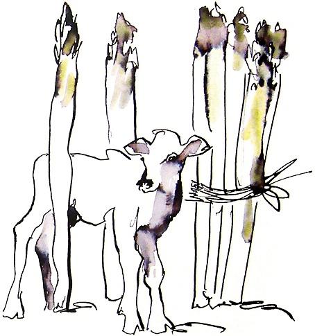 Sabine Forget, illustratrice, agence Marie Bastille // cette image appartient à son auteur et/ou l'agence Marie Bastille + d'infos sur le site //