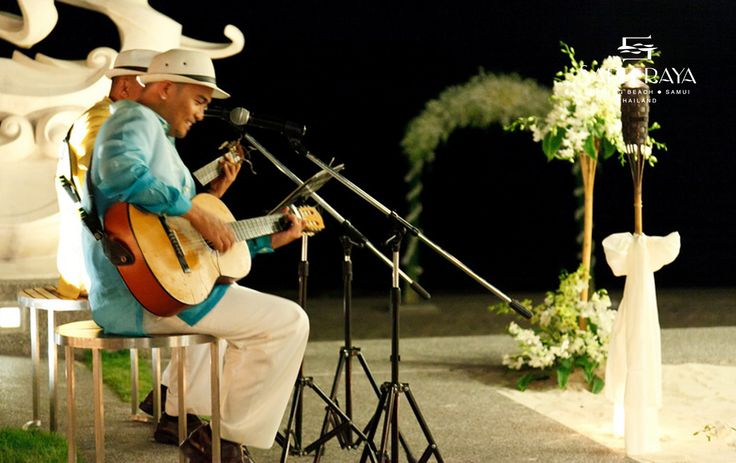 A solo or duo guitarists for your Cocktail Hour or Dinner Reception.