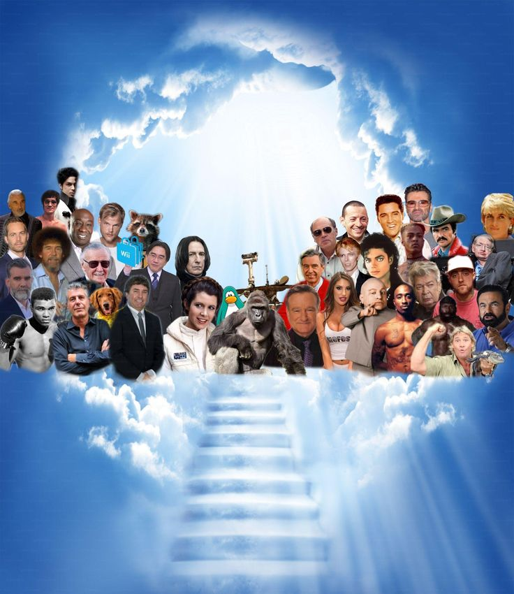 Welcome To Heaven Meme Template   Funny pictures, Memes ...