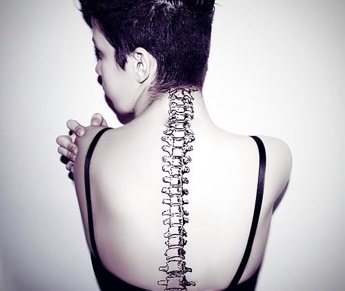 I think I'd want the just the cervical vertebrae though, it'd look pretty badass on my neck!