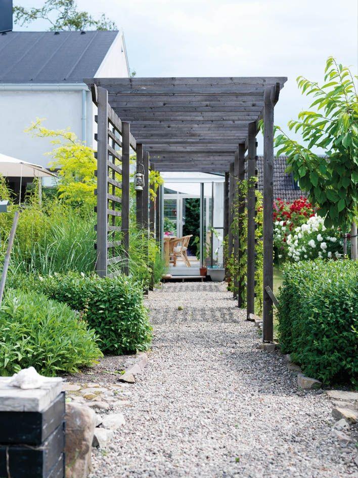 Trädgårdsgång/ Pergola