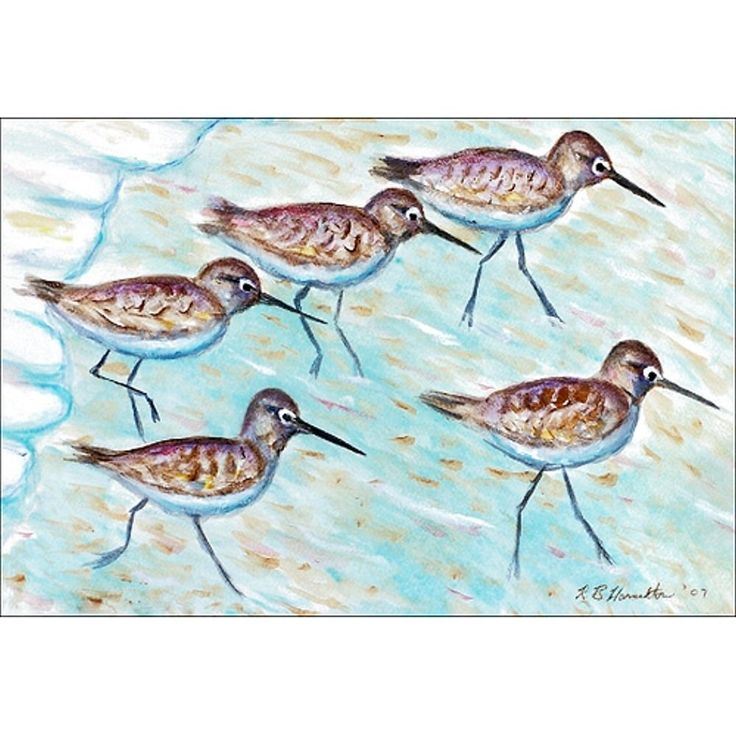 Betsy Drake Coastal Sandpipers Multicolored Polyester Door Mat (18x26), Multi