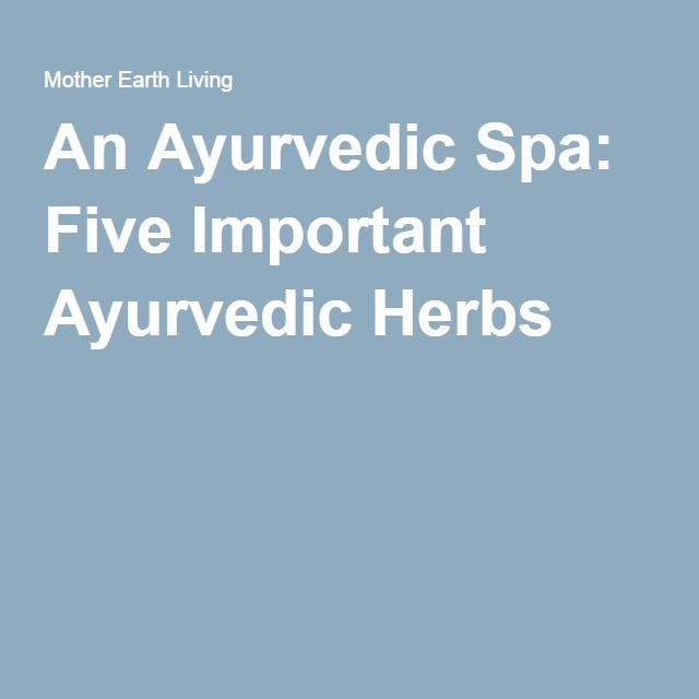 An Ayurvedic Spa: Five Important Ayurvedic Herbs