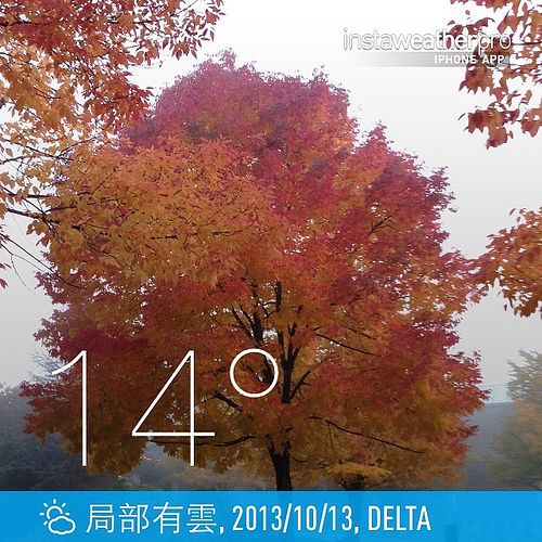 cool #weather #instaweather #instaweatherpro  #sky #outdoors #nature #world #love #followme #follow #beautiful #instagood #fun #cool #like #life #nice #happy #colorful #photooftheday #amazing #delta #加拿大 #day #autumn #ca ⛅️下午好☕️