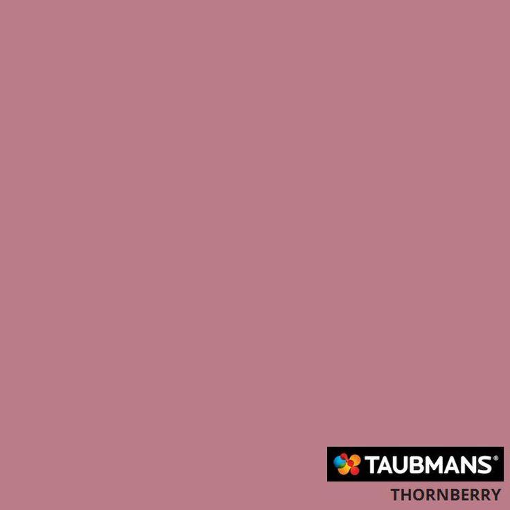 #Taubmanscolour #thornberry